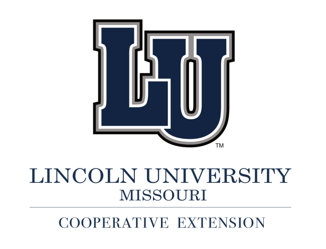AEA_Article_Logo_Lincoln_L.png