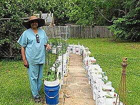 Person participates in container gardening project.